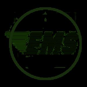 EMS — экспресс-доставка Почты России