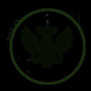 Доставка Почтой России — подробно
